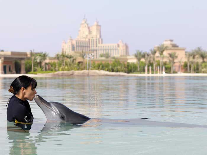 13806_16_Atlantis_dolphin_interaction
